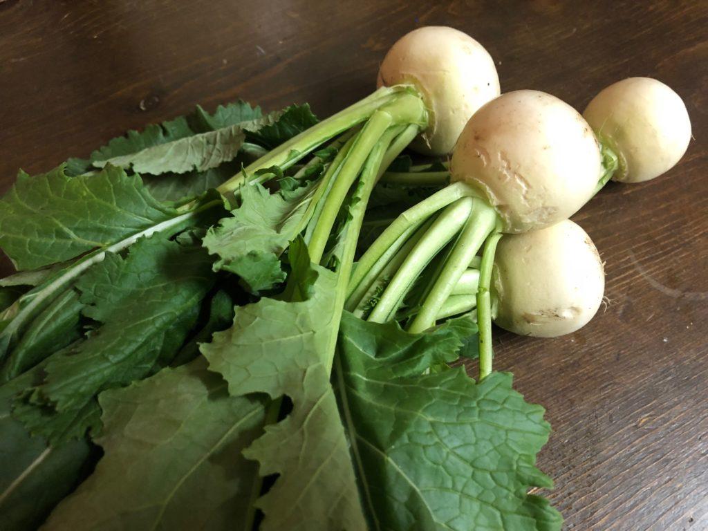 秋川牧園の無農薬野菜・小かぶ玉と葉部分アップ