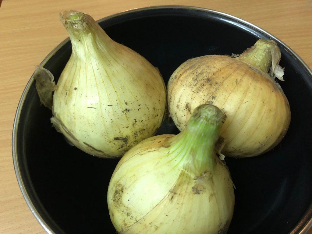秋川牧園の無農薬野菜・玉ねぎアップ